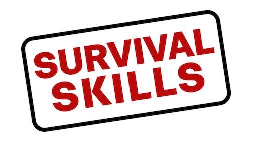 Survival Skills For Commission Sales People
